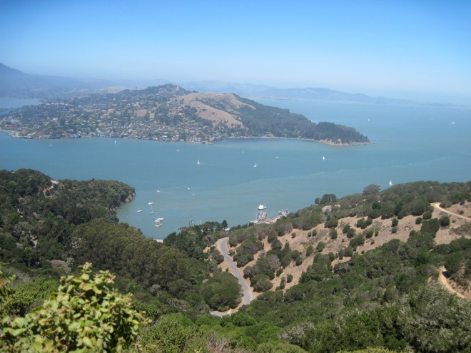 View of San Francisco Bay from Mr. Livermore